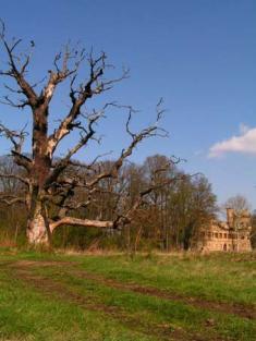 Okolí Janova hradu